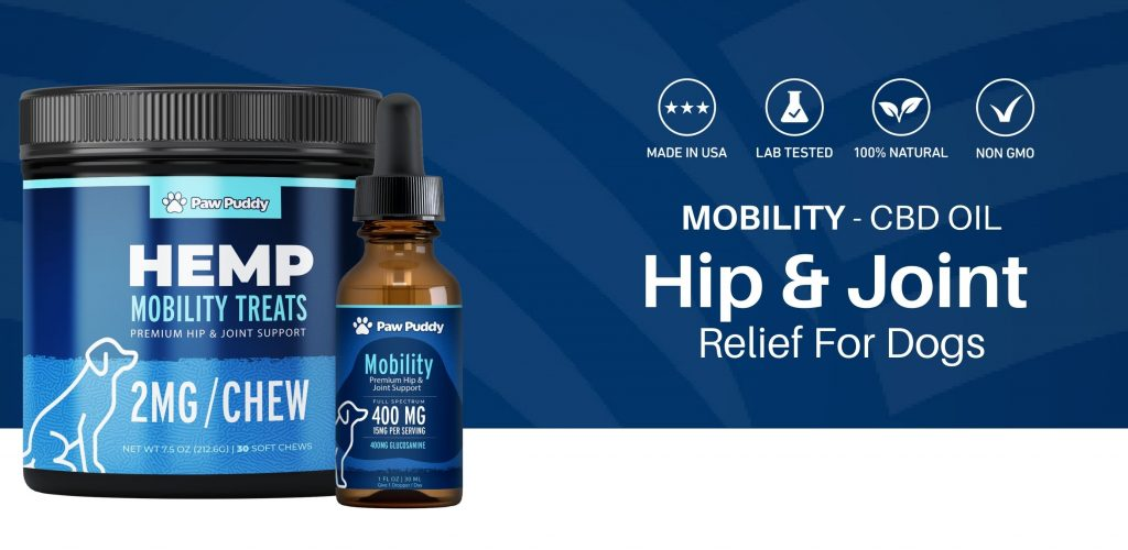 hip and joint relief for dogs