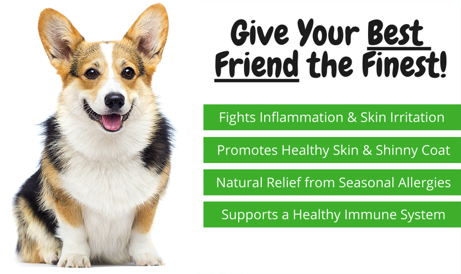 4 benefits of giving your dog CBD to treat allergies